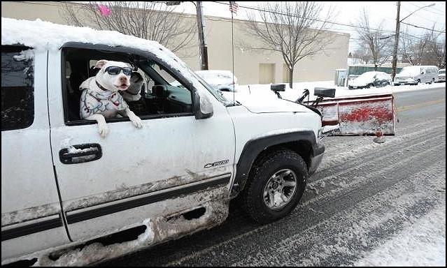 Москва против Нью-Йорка: как мегаполисы справляются со снегом
