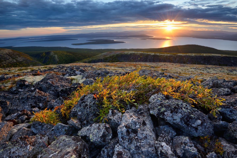 Фото: Yevgen Timashov / gettyimages.com