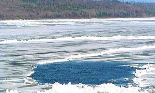 На Новосибирском водохранилище УАЗ провалился под лед