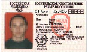 Каждый шестой автомобилист в России купил права