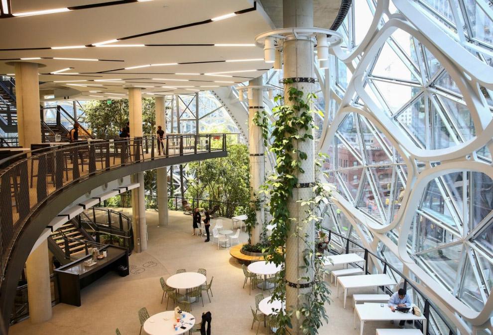 Корпоративный ботанический сад Amazon Spheres во дворе штаб-квартиры компании в Сиэтле