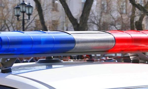VIP-такси с мигалкой полицейские оценили в 70 000 рублей