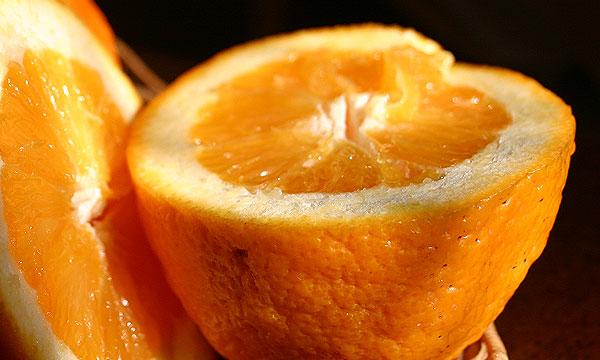 Испанцы предлагают делать топливо из апельсинов