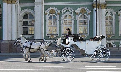 После гибели дочери мэра Сочи в Петербурге проверяют гужевой транспорт