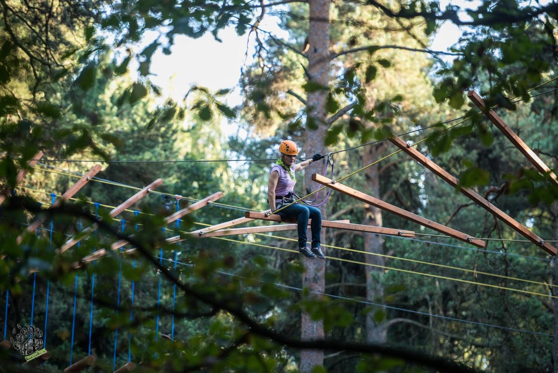 Фото: facebook.com/pandapark.org