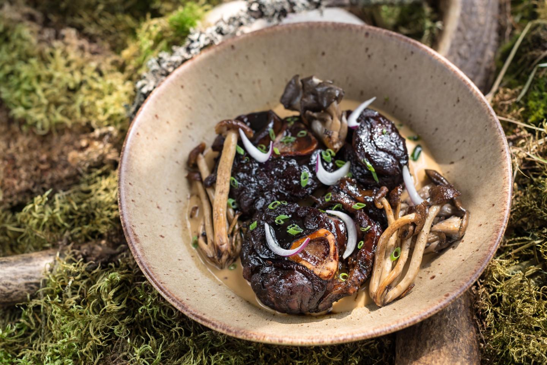 Голяшка оленя с лесными грибами