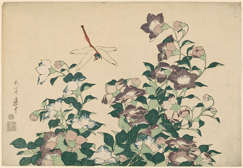 Кацусика Хокусай, «Колокольчики и стрекозы»