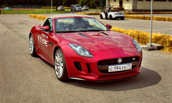Дико домашний. Jaguar F-type