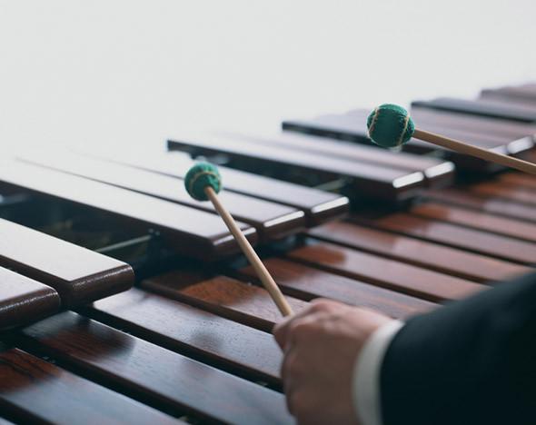 36cafbf49f711 Топ-10 самых необычных музыкальных инструментов :: Впечатления :: РБК.Стиль