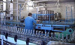 Построят завод по производству биотоплива
