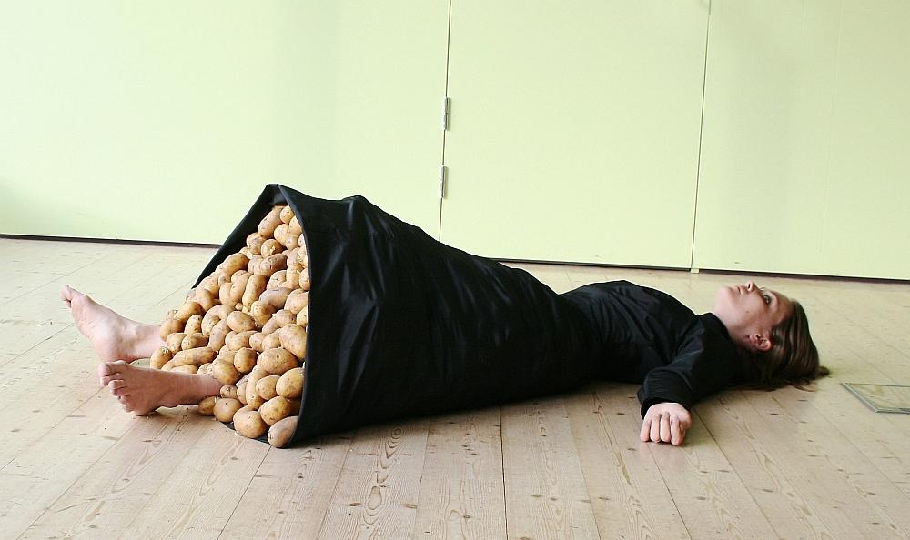 Малин Каста. «Если бы картофель был чувством», 2011