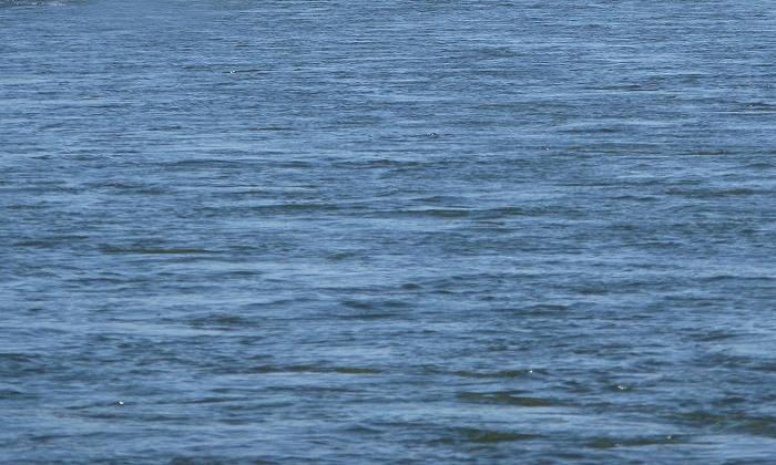 На Урале затонула баржа с автомобилями на 10 млн рублей