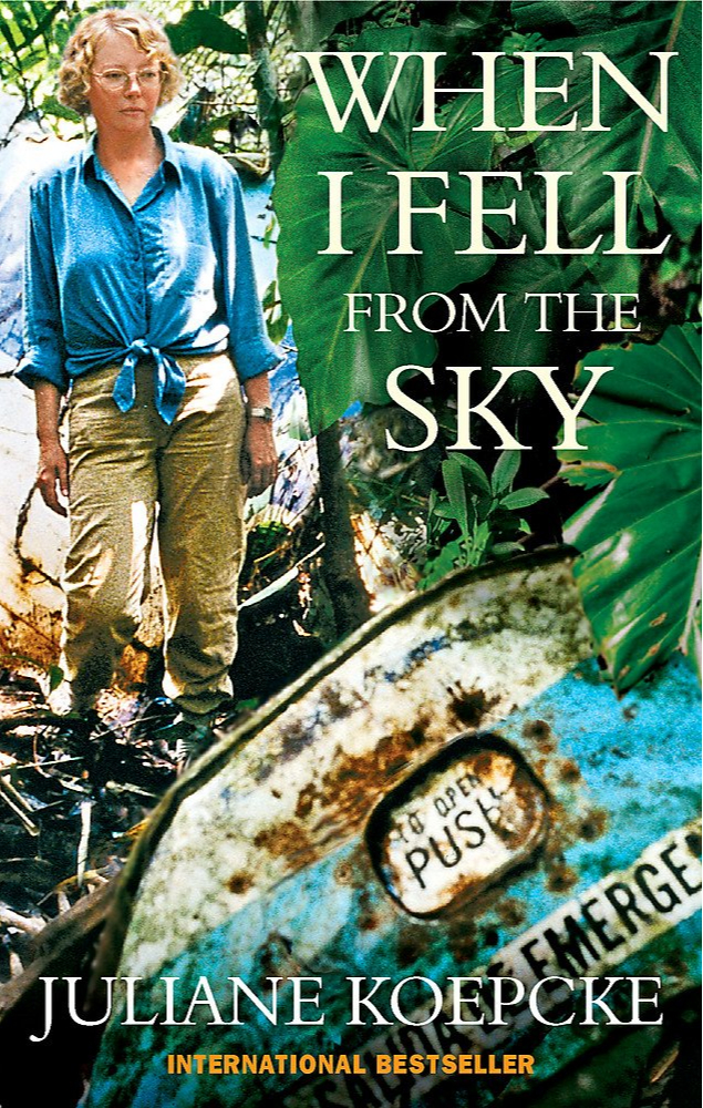 Книга«Когда я упала с неба»