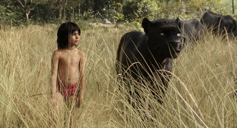 Кадр из фильма«Книга джунглей»