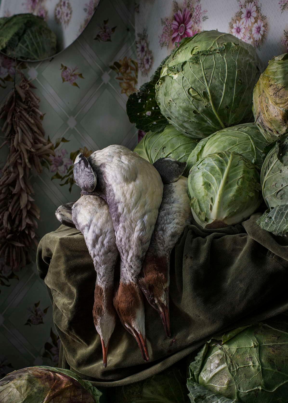 «Утки с капустой и кедровыми орехами», 2019, фотопечать, 71 х 50 см, тираж 10 экземпляров, 165000 руб.