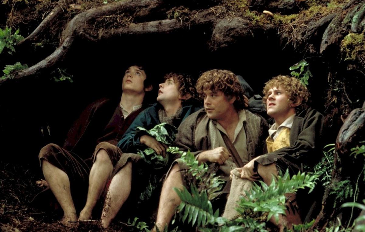 Кадр из фильма «Властелин колец: Братство кольца»