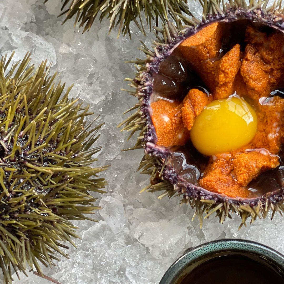 Морской еж с перепелиным желтком и соусом понзу