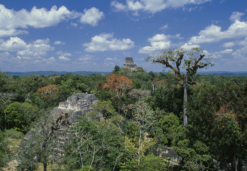Храм IV, Тикаль, Гватемала