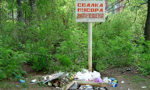 Выброшенный из машины пакет мусора обойдется в 1000 рублей