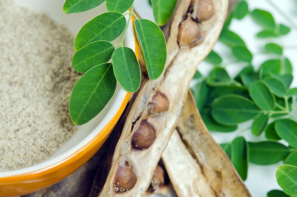 Листья и семена моринги