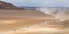 Неподалеку от Уолфиш-Бей находится множество песчаных дюн. Местные возят туда экскурсии, а также дают возможность туристам покорить их на какой-нибудь экстремальной внедорожной технике — например, на квадроциклах. Все местные дюны пронумерованы. Одна из самых крупных в Африке и в мире — дюна №7.