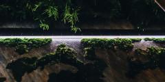 Из-за зеркальных стен кажется, что у леса нет ни начала, ни конца. Каждая экскурсия по этой части DOME сопровождается световыми эффектами, которые создают ощущение сказки.