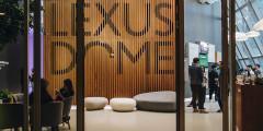Уже на входе в DOME посетителей встречают необычные детали. Например, мягкие диваны, стилизованные под вековые валуны.