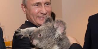 Фото: Getty Images/Fotobank.ru; ИТАР-ТАСС