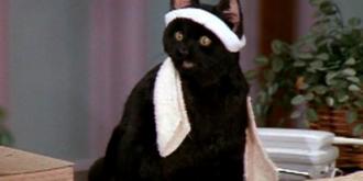 Кадр из сериала «Сабрина — маленькая ведьма»