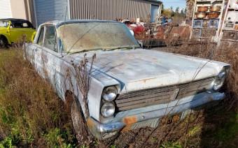 В США обнаружили заброшенную коллекцию автомобилей