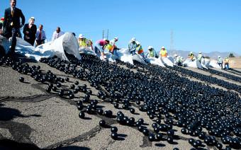 Фото:Gene Blevins / Zuma / ТАСС
