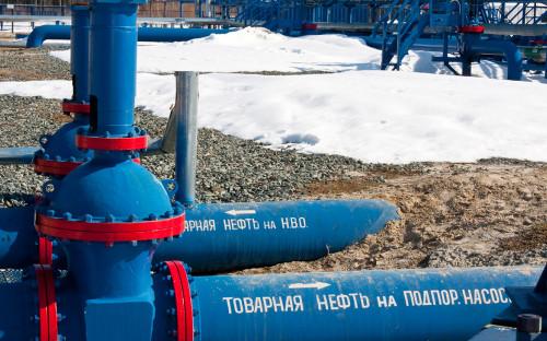Фото:Георгий Гранин / РИА Новости