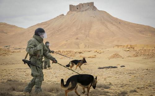 Российские военные в окрестностях Пальмиры