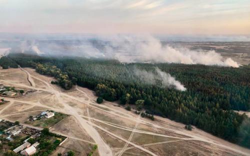 Фото:Правительство Ростовской области