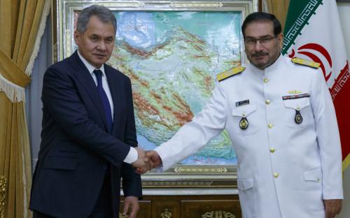 Али Шамхани (справа) во время встречи с министром обороны России Сергеем Шойгу