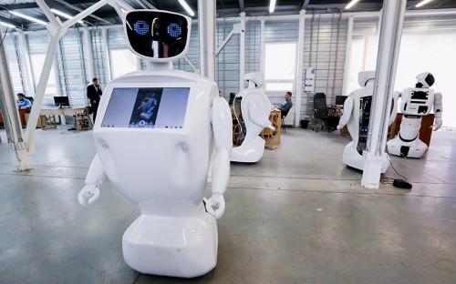 <p>Promobot &mdash; андроид-промоутер, который производится в Перми. Он может работать на выставках и конференциях, помогая им с навигацией и отвечая на их вопросы.</p>  <p>Разработчики утверждают, что их робот на 80% состоит из отечественных комплектующих, остальные 20% &mdash; электронная начинка из Китая. Собирают &laquo;промоботов&raquo; на производственной площадке, расположенной на территории бывшего Пермского лакокрасочного завода.</p>