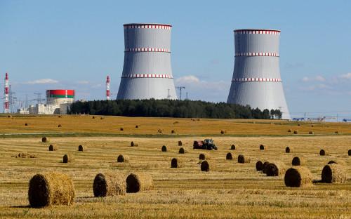 Президент Литвы назвал неприличной покупку электроэнергии с БелАЭС