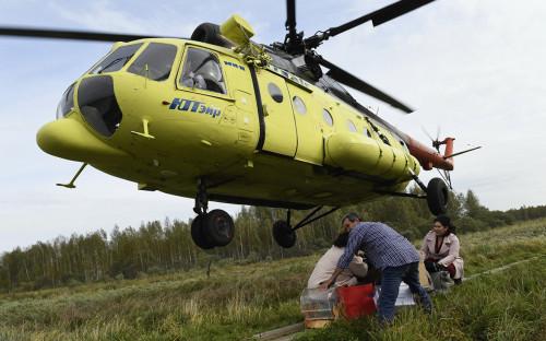 Фото:Сергей Русанов / РИА Новости