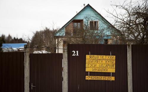 <p>Деревня Ядрово с населением около 150 человек находится примерно в 6&nbsp;км от Волоколамска. Менее чем в километре от жилых домов &mdash; одноименный мусорный полигон, созданный там в конце 70-х годов прошлого века.</p>
