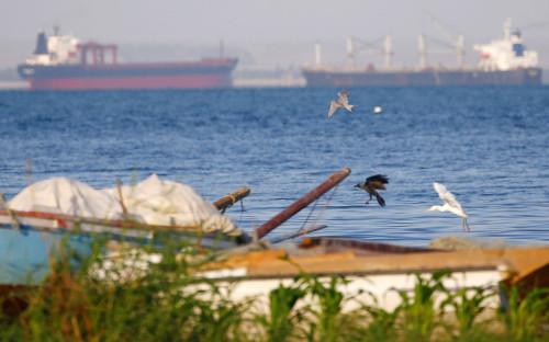 Вид на Суэцкий залив
