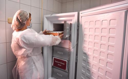 Сотрудница поликлиники №2 с вакциной от коронавируса в холодильном боксе