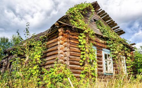 Фото: FotograFFF/shutterstock.com