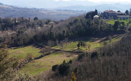 Хозяйству Aiola принадлежит 100 га живописных холмов врегионе Кьянти-Классико. Виноградниками заняты лишь36га, абóльшая часть территории—леса, вкоторых обитают волки, косули икабаны.