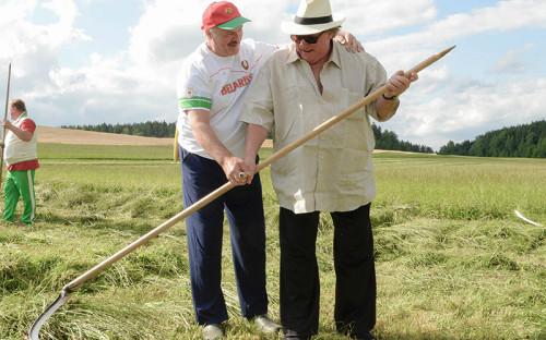 Президент Белоруссии Александр Лукашенко и актер Жерар Депардье (справа налево) косят траву на территории официальной резиденции президента Белоруссии «Озерный» в Острошицком городке