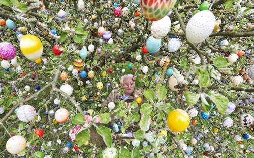 Фолькер Крафт подвешивает еще одно пасхальное яйцо на яблоню в своем саду. Семья Крафтов украшает дерево уже больше 40 лет, так что сейчас на нем - около 10 тыс. пасхальных яиц.