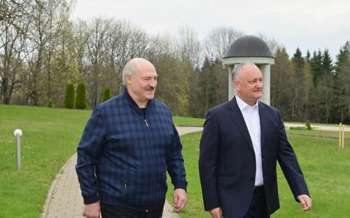 Александр Лукашенко и Игорь Додон