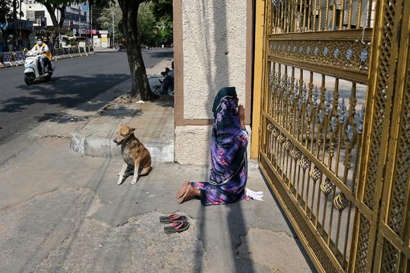Фото:Mahesh Kumar A. / AP