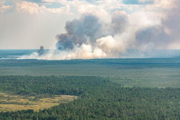Фото: Денис Бушковский / ТАСС