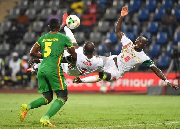 Сенегал, 1-е место в группе D африканского турнира