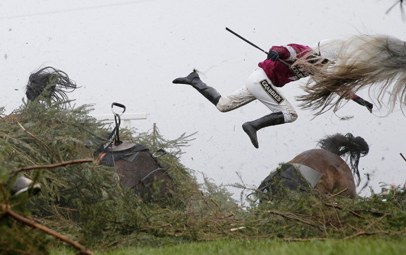 Фото:Tom Jenkins / The Guardian